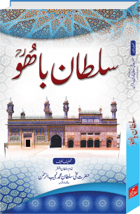 Sultan Bahoo, Book