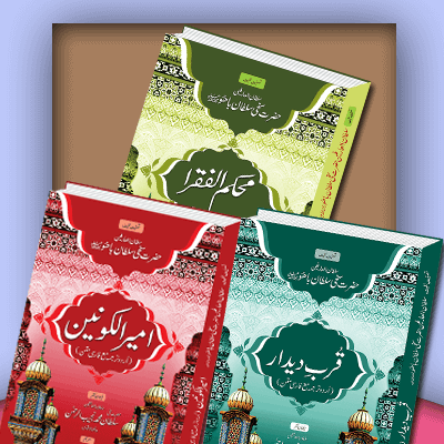 Sultan Bahoo Books translated in Urdu